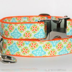 Hundehalsband und Hundeleine orange türkis Prints als Set in unterschiedlichen Ausführungen herstellbar