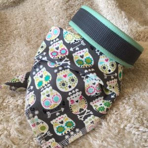 Hundehalsband und Hundehalstuch grün-grau im Piratenlook als Set ein tolles Accessoire für Ihren Hund!