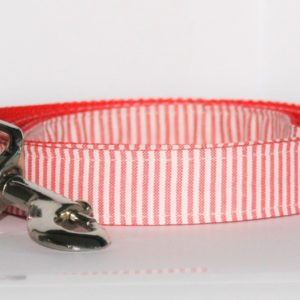 Hundeleine Street rot in zwei Ausführungen erhältlich